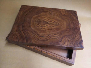 Evolution Box by The Beehive India