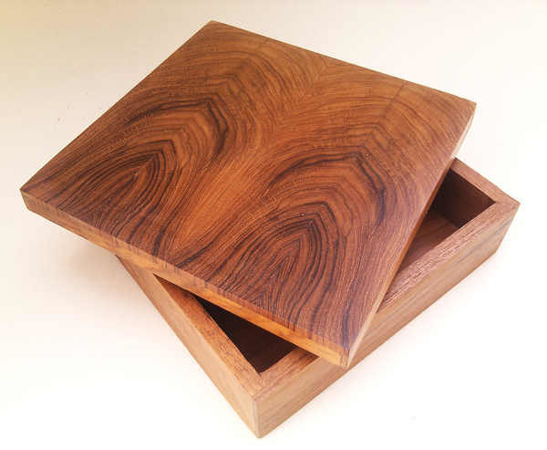 Long Cross Section Box by The Beehive India